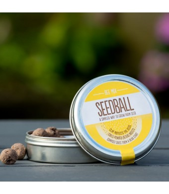 Seedball : Bee Mix