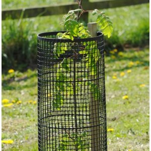 Plastic Mesh Tree Guard