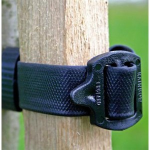 Buckle Tree Tie