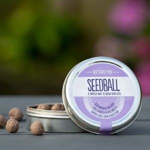 Seedball : Butterfly Mix