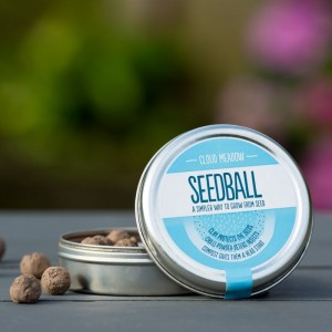 Seedball : Cloud Meadow