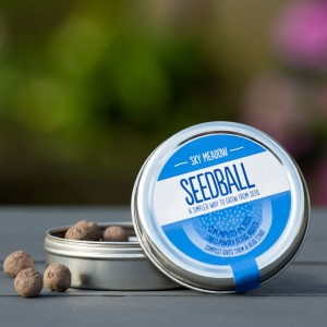 Seedball : Sky Meadow