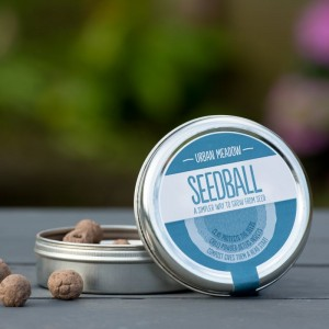 Seedball : Urban Meadow