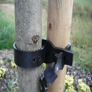 Supersoft Tree Tie