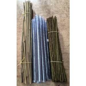 WIllow Planting Bundle 90cm