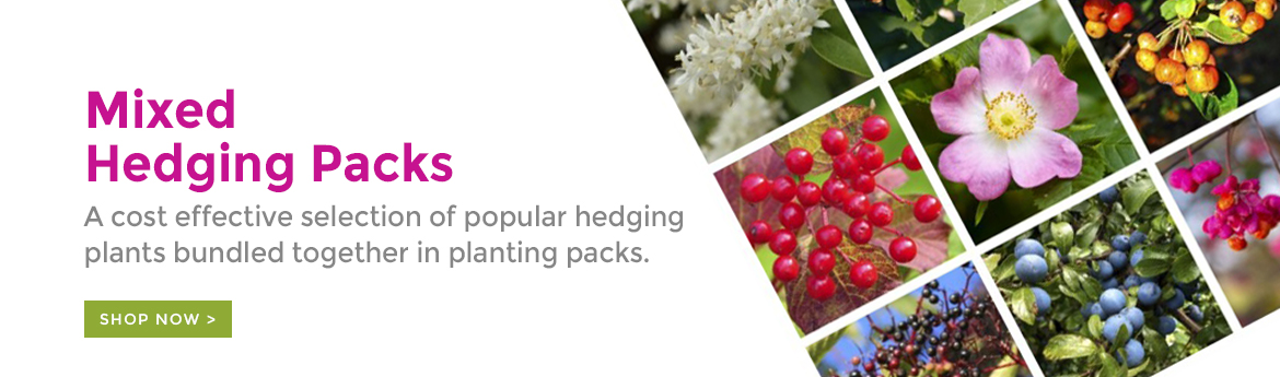 Mixed Hedging Packs