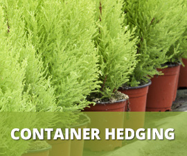 Container Hedging