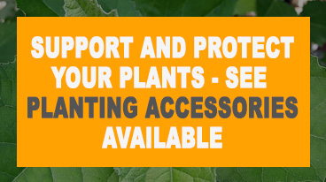 Support and protect your plants - see  planting accessories available