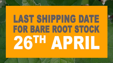 Last shipping date for Bare Root plants is 26th April.
